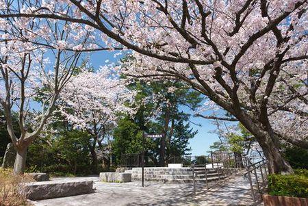 西公園(福岡市中央区)