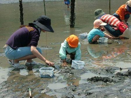 長浜海岸潮干狩り