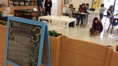 施設写真 わんちゃんとふれあいながら里親になれる 保護犬カフェ