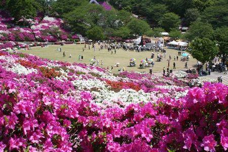 西山公園(鯖江市)