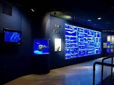 海のはくぶつかん 東海大学海洋科学博物館