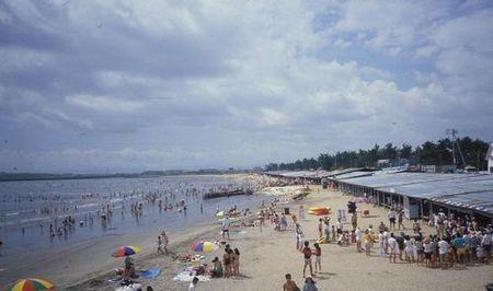 潮干狩り 御殿場 2020 海岸