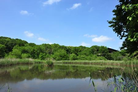 埼玉県自然学習センター・北本自然観察公園