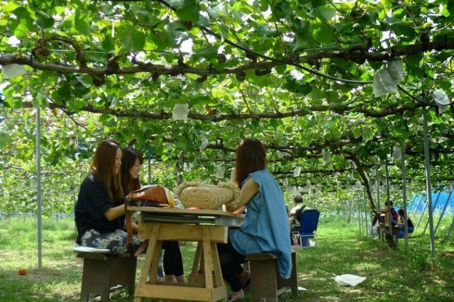 たけきん果樹園
