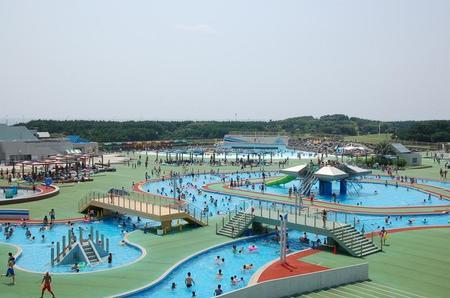 公園 辻堂 海浜