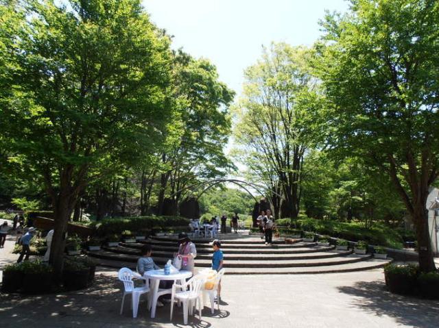 神奈川県立四季の森公園