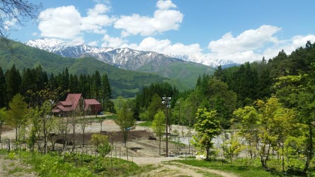 白馬森のわさび農園(オートキャンプ場併設)