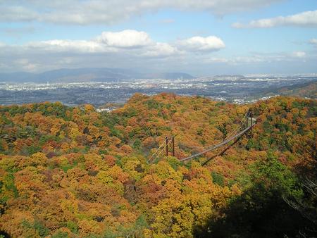 大阪府民の森ほしだ園地