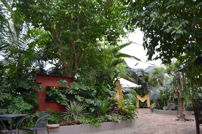 Garden Centre: 『【施設写真】 植物が好きな人も初めての人も、ちょっとした