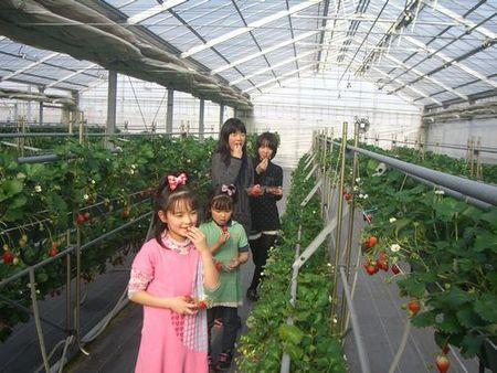 篠津・季節の香り農園