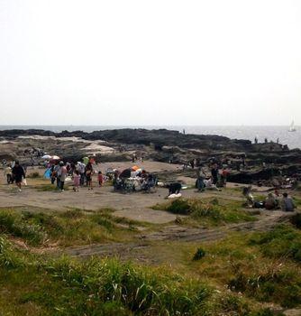 城ケ島の磯場