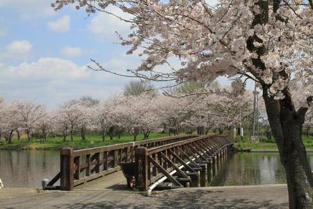 吉野公園(常総市)
