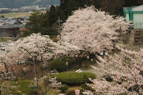 松岡公園(永平寺町)