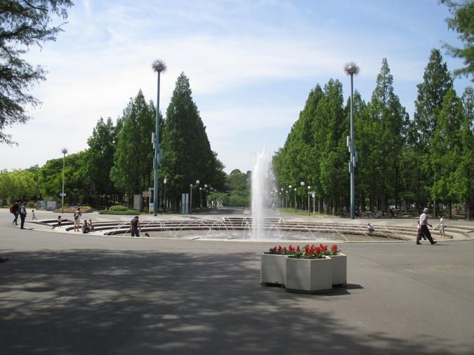 公園 鶴見 緑地