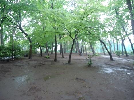 天気 杉並区