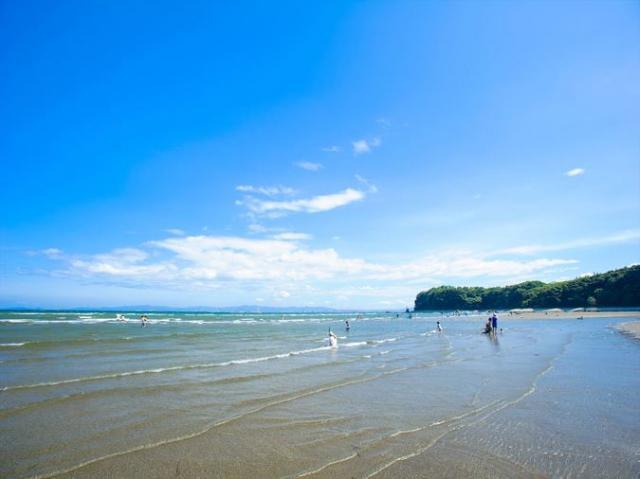 糸ヶ浜海浜公園