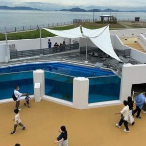 四国 水族館 イルカ ショー