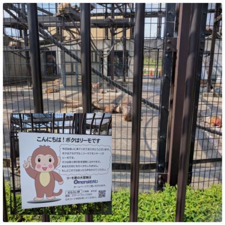大浜公園(堺市堺区) | 子供とお出かけ情報「いこーよ」
