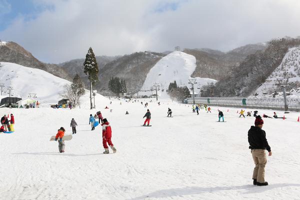 奥 伊吹 スキー 場 オープン 予定