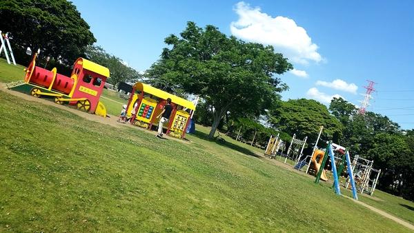 近く 広い 公園