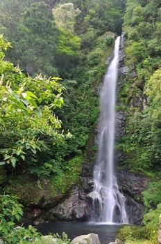樽の滝(高知県)   子供とお出かけ情報「いこーよ」